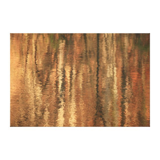 River Reflections One Canvas Print