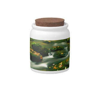 River Roaring Fork Exposure Smoky Tennessee Candy Jars
