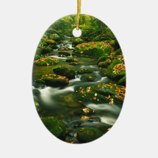 River Roaring Fork Exposure Smoky Tennessee Ceramic Ornament