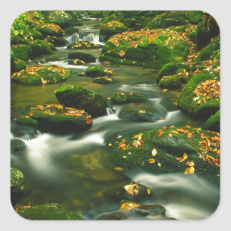 River Roaring Fork Exposure Smoky Tennessee Square Sticker
