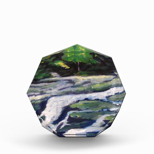 River Rock Acrylic Award