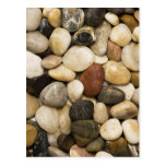 River Rock Stone Background - Customized Template Post Cards
