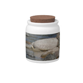 River rocks candy jars
