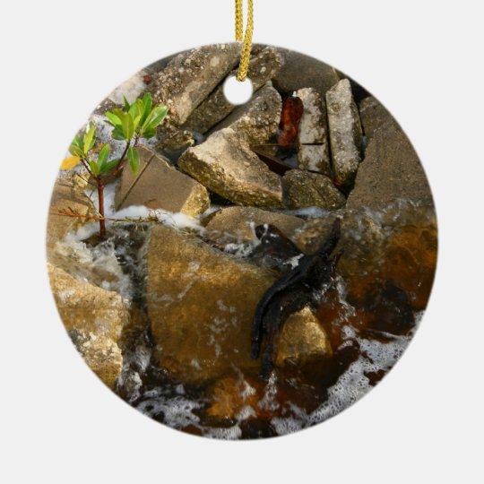 River Rocks Cement Blocks and Mangrove Seedling Ceramic Ornament