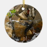 River Rocks Cement Blocks and Mangrove Seedling Christmas Ornament