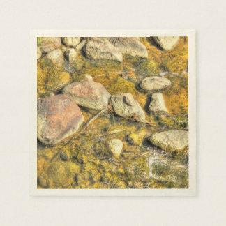 River Rocks Paper Napkin