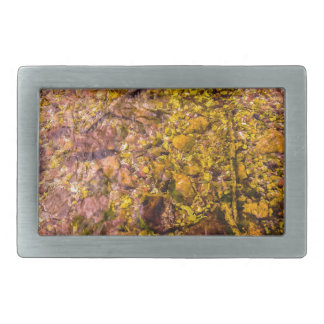 River Rocks Rectangular Belt Buckle