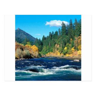 River Rogue Siskiyou Forest Oregon Postcard