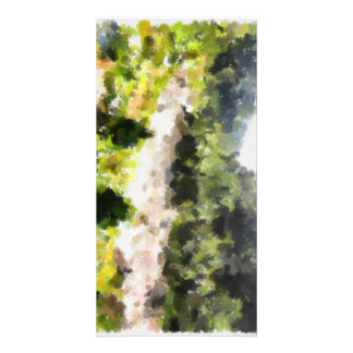 River running through forest photo card