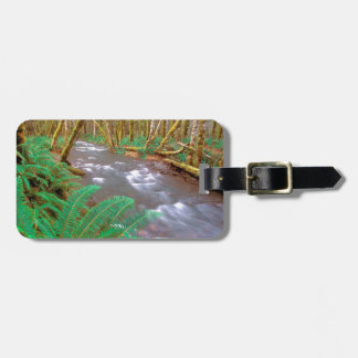 River Running Wild Hughes Olympic Travel Bag Tags