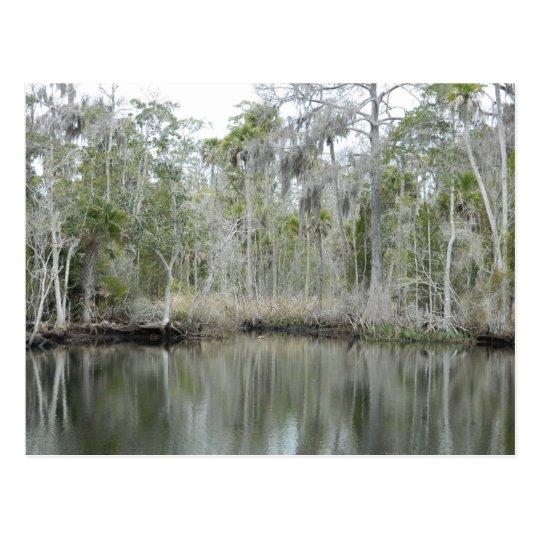 River Scene 689 Postcard