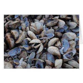 River Shells Card