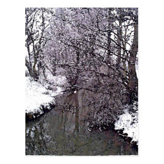River Snow Scene Postcard
