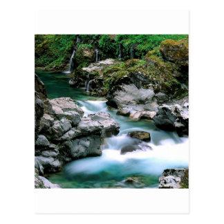 River Spring Siskiyou Forest Oregon Postcard