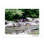 River Stones, (c)Sandiish Post Card