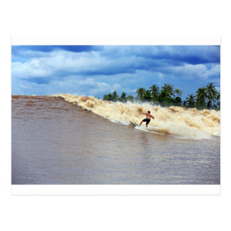 River surfing tidal bore Seven Ghosts Postcard