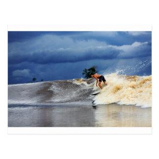 River surfing tidal bore wave tropical paradise postcard