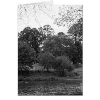 River Taff at Bute Park, Cardiff - BW Greeting Card