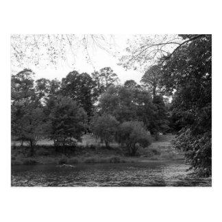 River Taff at Bute Park, Cardiff - BW Postcard