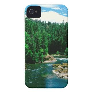 River Umpqua Douglas County Oregon iPhone 4 Cases