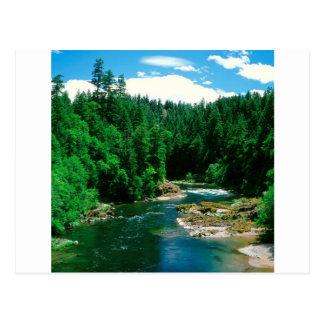 River Umpqua Douglas County Oregon Postcard