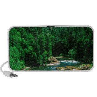 River Umpqua Douglas County Oregon iPhone Speaker