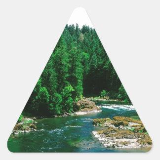 River Umpqua Douglas County Oregon Triangle Sticker