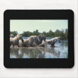 River Walking Horses Mousepad