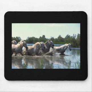 River Walking Horses Mouse Pad