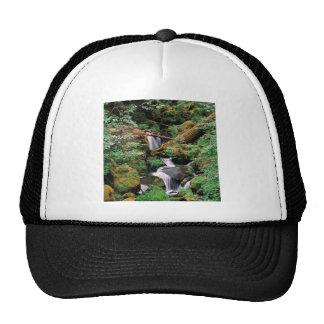 River Watson Umpqua Forest Oregon Trucker Hat