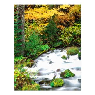 River Willamette Forest In Autumn Oregon Personalized Letterhead
