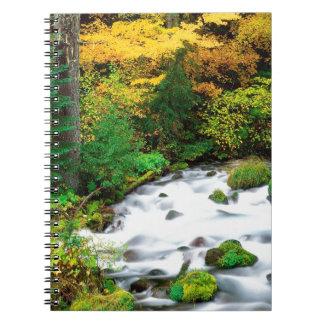 River Willamette Forest In Autumn Oregon Spiral Notebook