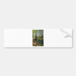 River with trees in spring bumper sticker
