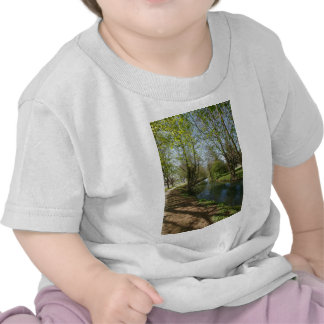 River with trees in spring t shirt