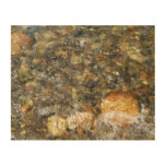 River-Worn Pebbles Brown and Grey Natural Abstract Wood Print