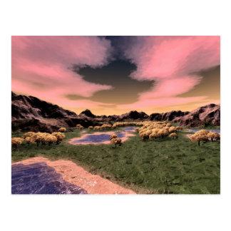 Riverbed Postcard