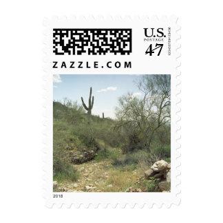 Riverbed Remembrance Desert Postage Stamp