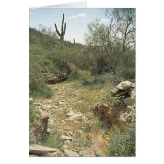 Riverbed Remembrance Greeting Card or Note Cards