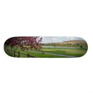 Rivercut In Spring Skateboard Deck