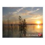 Riverkeeper Postcard