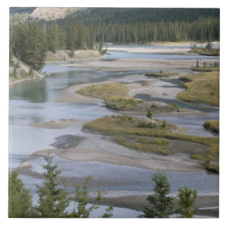 Rivers run through a lowland section of Jasper Ceramic Tile
