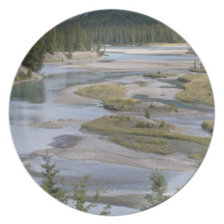 Rivers run through a lowland section of Jasper Dinner Plate