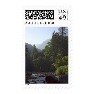 Rivers Valleys Canyons Pinetrees Postage