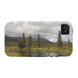 Riverscape Vibe iPhone 4 Carcasas