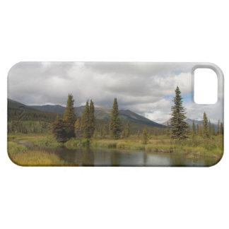 Riverscape iPhone 5 Carcasas