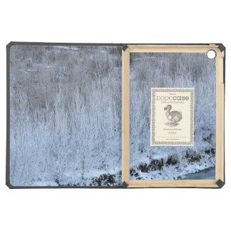 Riverside Frozen iPad Air Cover