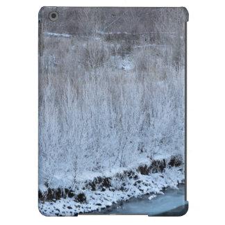 Riverside Frozen iPad Air Case