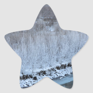 Riverside Frozen Star Sticker