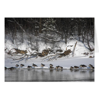 Riverside Geese Greeting Card
