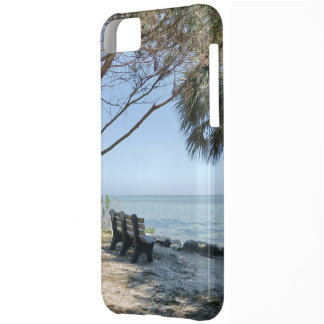 Riverview No. 1 iPhone 5C Cover